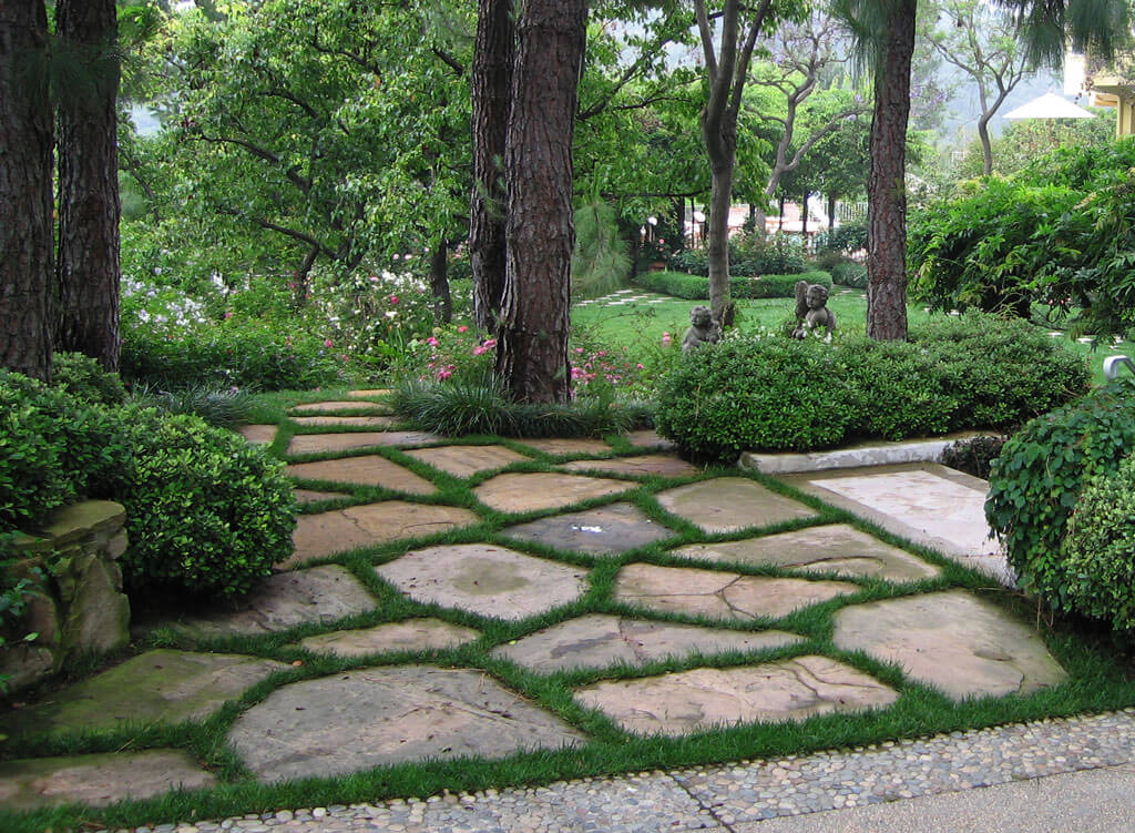 Landscaping ideas for landscaping with trees and shrubs for Landscape trees
