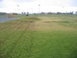 city park lawn care