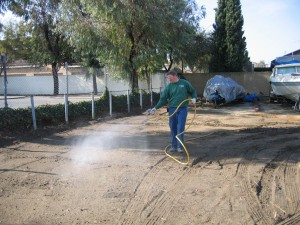 spraying, weeds, trees, dying trees, pest control, ventura county