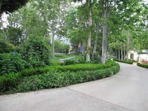 trees mansion, landscape, santa barbara, pest control, weeds