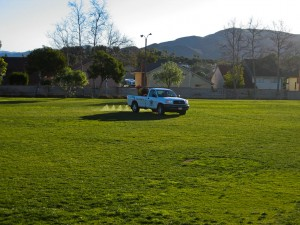 Lawn Weed Control, at local school in Camarillo, CA