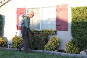 Exterior Pest Control Spraying