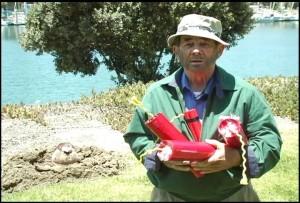 pest control, insects, landscape, camarillo, malibu