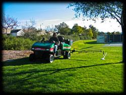 broadleaf sprayer, lawn, landscape, trees, plants, plant disease