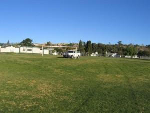 kastle kare, truck, lawn, landscape, plant disease