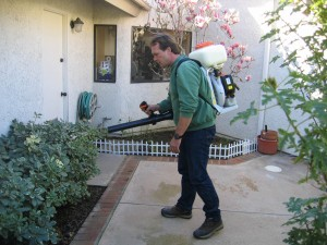 spraying planter, residential, plant diesease, pest control, insects