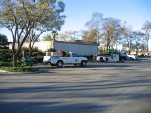 kastle kare, exterminator, trucks, pest control, ventura county