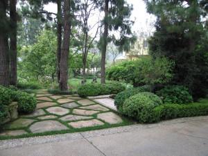 trees, shrubs, landscape, ventura county, pest control