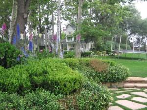 trees, shrubs, insects, pest control, landscape, santa barbara