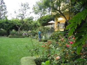 spraying shrubs, santa barbara, landscape, weeds, lawn, pest control